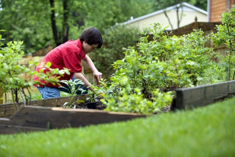 decoracin de jardines